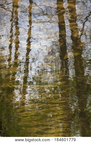 Sandy bottom of the stream and abstract reflections in the water