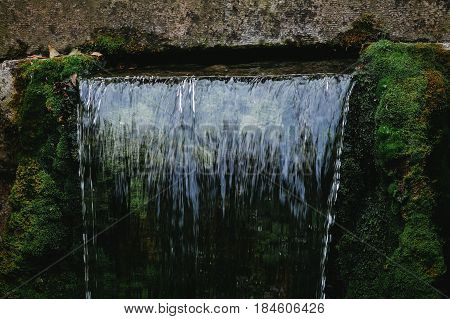 Closeup of clean water falling over green moss background