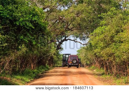Scenic view with of road and offroad vehicles on it in Yala National Park, Sri Lanka