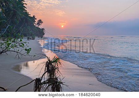 The Sunrise Over The Ocean