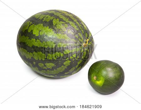 two water melons on a white background big and small dwarfish version