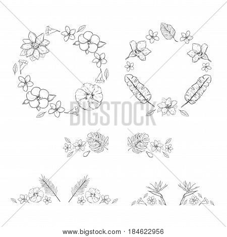 Sketch monochrome floral exotic plants collection with wreathes and decorations of flowers and plants isolated vector illustration