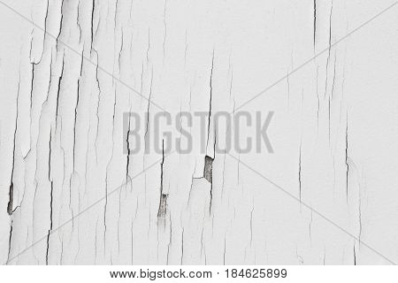 white texture of wooden background. White soft wood surface as background. white painted wall texture abstract background seamless pattern