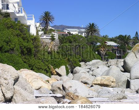 FROM CLIFTON, CAPE TOWN, SOUTH AFRICA, LANDSCAPE,WITH BOULDERS AND TREES IN THE FORE GROUND AND HOUSES AND MOUNTAIN IN THE BACK GROUND 22sert