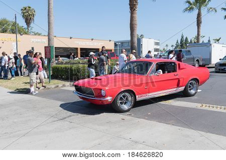 Ford Mustang Gt 500 On Display