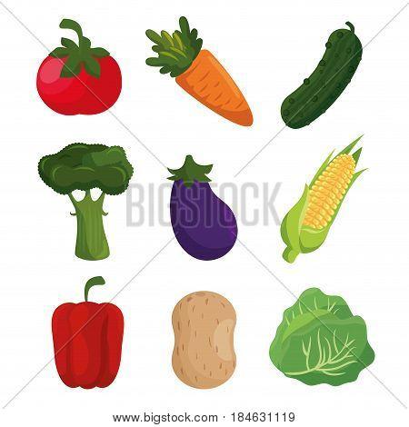 vegetables healthy food vegan icons vector illustration design
