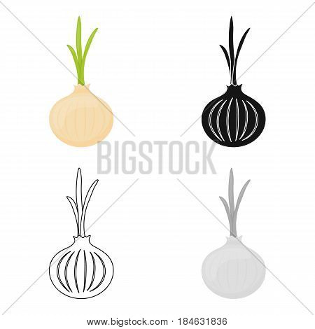 Onion icon cartoon. Singe vegetables icon from the eco food cartoon.