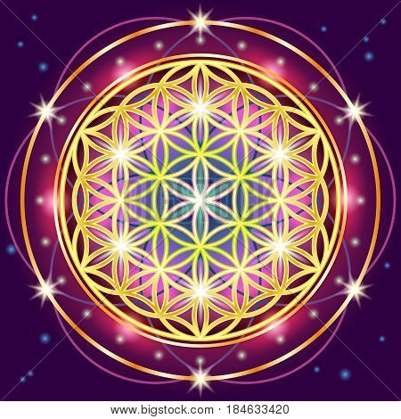 Symbols of sacred geometry depict fundamental aspects of space and time.Flower of life symbol variations.