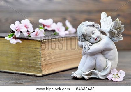 Close up of angel guardian sleeping on wooden background