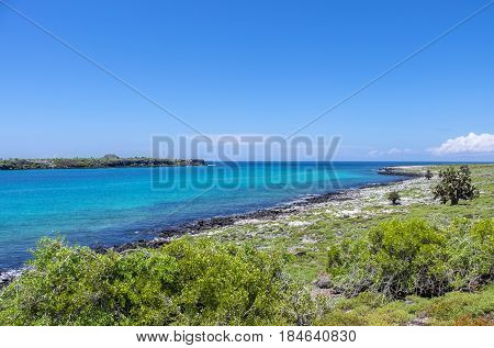 South Plaza island in Galapagos Islands Ecuador