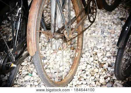 An old bicycle is chained and forgotten by a fence.
