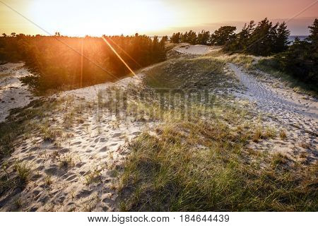 Sand dunes by the beach on Lake Superior in Whitefish Point, Michigan at sunset