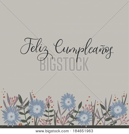Feliz Cumpleanos - Happy Birthday in Spanish. Calligraphy Greeting Card. Handwritten inscription. Handwritten ink text for birthday greeting card, poster design and gift tags. Vector illustration