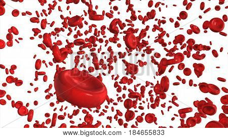 Red Blood Cells Isolated On White Background