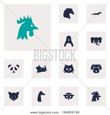 Set Of 12 Beast Icons Set.Collection Of Hog, Bear, Gecko And Other Elements.