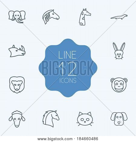 Set Of 12 Brute Outline Icons Set.Collection Of Lion, Sheep, Rabbit And Other Elements.