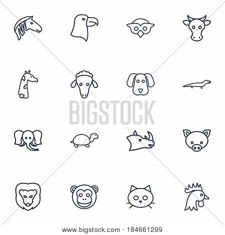 Set Of 16 Alive Outline Icons Set.Collection Of Elephant, Cow, Rhino And Other Elements.