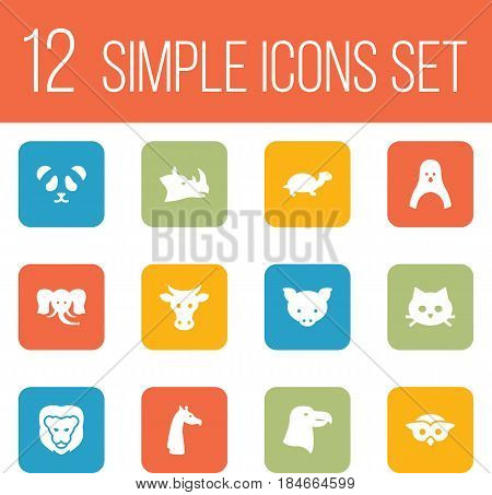 Set Of 12 Brute Icons Set.Collection Of Diver, Wildcat, Night Fowl And Other Elements.
