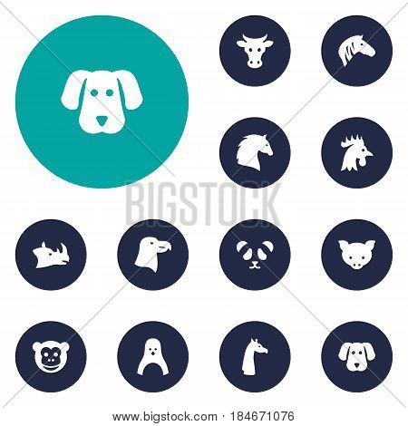 Set Of 12 Brute Icons Set.Collection Of Rooster, Ape, Steed And Other Elements.