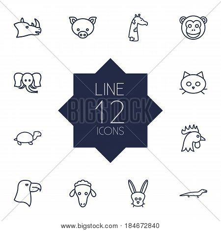 Set Of 12 Brute Outline Icons Set.Collection Of Giraffe, Sheep, Rhino And Other Elements.