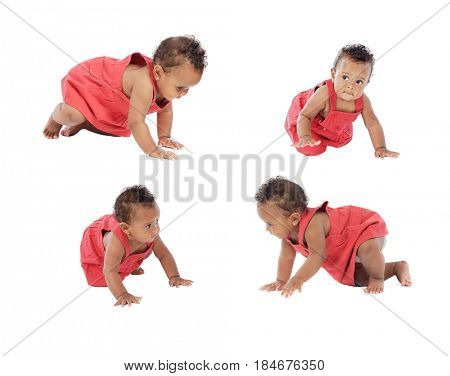 Four images of a beautiful baby girl crowling isolated on a white background