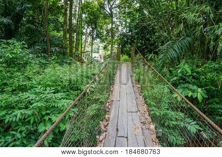View of suspension bridge on an early morning with background of tropical jungle in Lingkungan,Beaufort,Sabah.The suspension bridge made form steel cables and planks was equally wide.