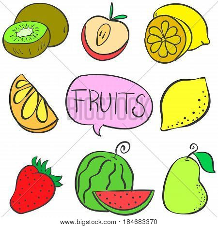 Collection stock various fruit doodles vector illustration