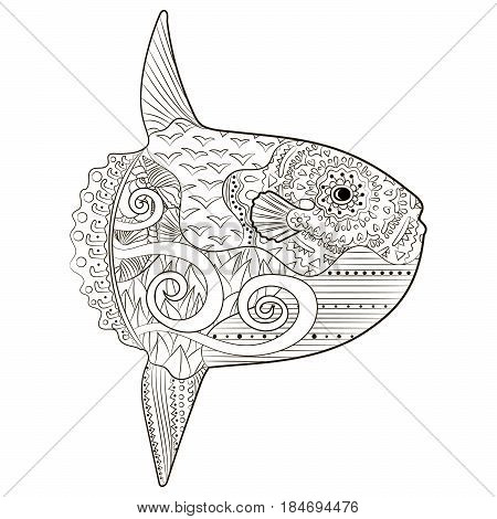 Underwater moon fish in zentangle style. Adult antistress coloring book. Hand drawn doodle oceanic animal for art therapy. Animal with high details isolated on white background. Vector illustration