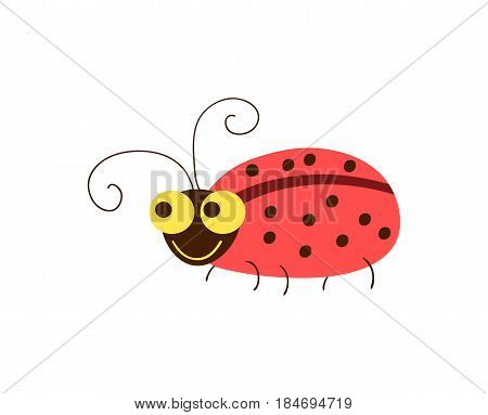 Funny ladybug vector illustration isolated on white background. Cute insect, comic bug, smiling wildlife character in cartoon style.