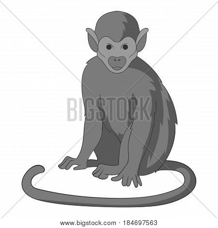 Snub nosed monkey icon in monochrome style isolated on white background vector illustration