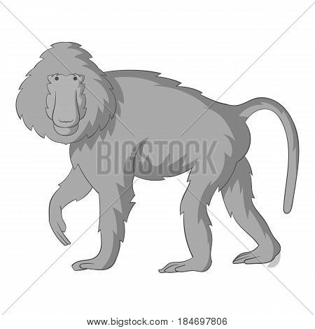 Baboons icon in monochrome style isolated on white background vector illustration