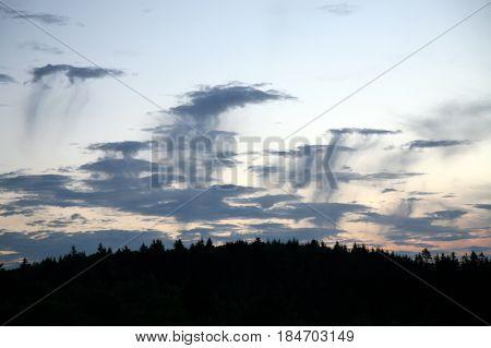 Cloudscape with Altocumulus floccus virga clouds, Altocumulus middle-altitude cloud with rain by sunset.