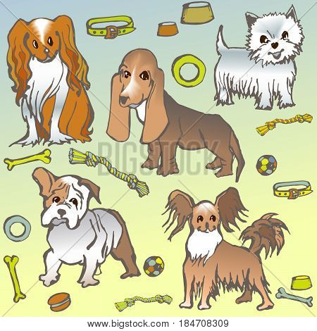 sketch of small dogs of different breeds - Cavalier King Charles spaniel, West Highland Terrier, Bulldog, Basset Hound, vector doodle cartoon