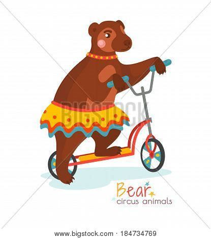 Circus bear in colorful skirt rides on scooter isolated on white background. Trained wild beast performs trick on arena. Vector illustration in cartoon style for ticket, invitation, card, flyer, promotion leaflet