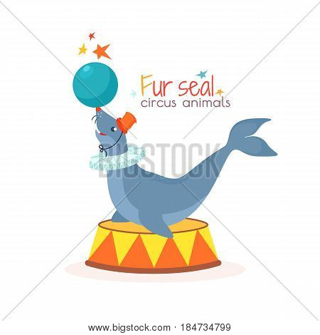 Circus seal holds the ball on its nose - isolated on white background. Trained sea animal performs trick at arena. Vector illustration in cartoon style for ticket, invitation, card, flyer