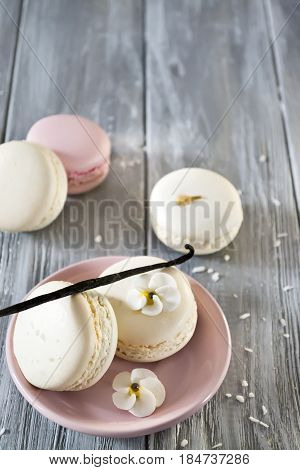 French macaroons in a pink plate and vanilla stick