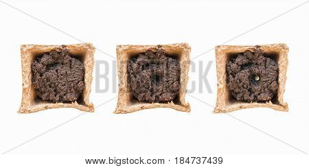 Peat pot with soil in three states: empty prepared for seeding and with planted seed in it. Top view. Isolated on white