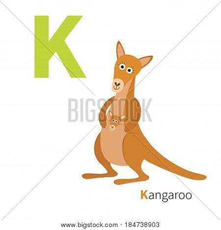 ABC english alphabet. Letter K. Kangaroo mom with baby in the pocket pouch. Cute cartoon character. Australia marsupial animal. Education card for kids. Flat design. White background. Vector