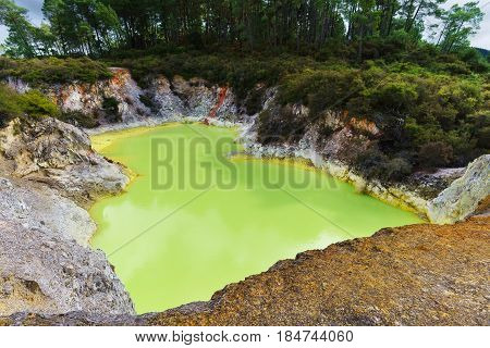 Devil's Bath crater pool at Wai-O-Tapu geothermal area Rotorua North Island of New Zealand