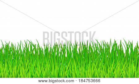Vector horisontal seamless pattern green grass endless texture template