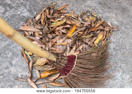 Sweeping Leaves with Coconut Leave Broom on Street