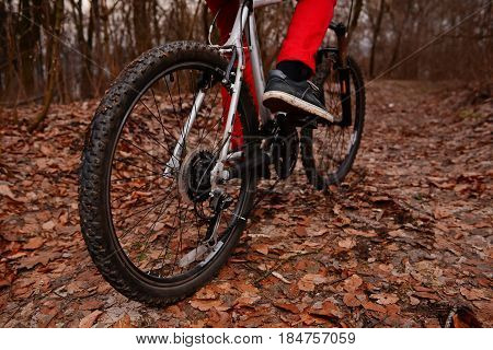 Low Angle View Of Cyclist Riding Mountain Bike On Trail At Sunrise In The Forest