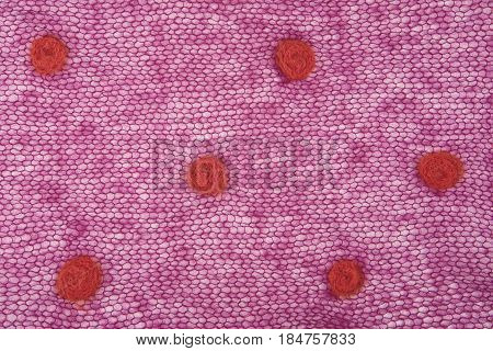 Knitted Purple Mohair Fabric With Dots