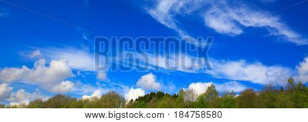 Natural sky composition. Blue sky with clouds and trees.