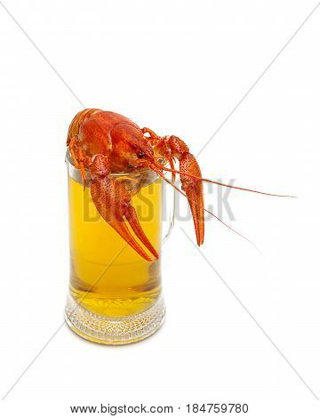 Full glass with beer and boiled crayfish on a white background. Horizontal photo.