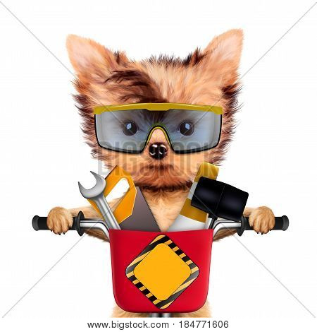 Funny dog with construction tools and bike isolated on white background. Constructor and handyman concept. 3D illustration