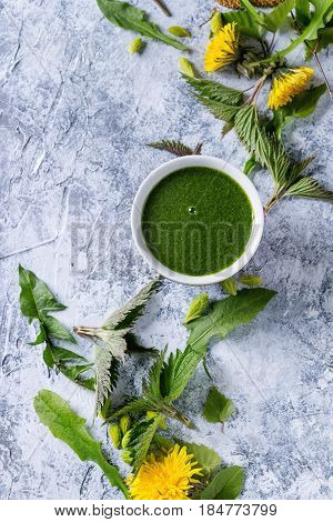 Spring green nettle and dandelion smoothie bowl served with yellow flowers, young birch leaves, spruce needles over gray blue texture background. Top view, space