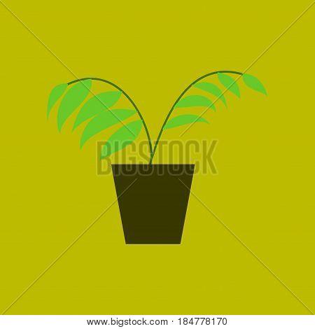Icon in flat design Ficus nature flowerpot