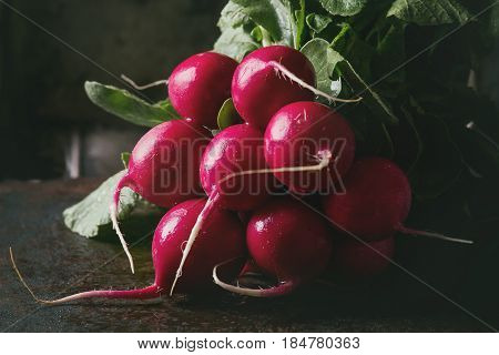 Fresh organic ripe young radish bundle with leaves over dark texture background. Close up