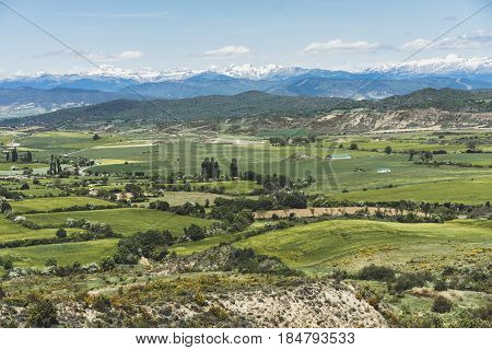 Panoramic view yellow flowers and green hill on background nature field. Summer landscape perspective blurred backdrop. Sun and blue sky clouds outside lifestyle holiday concept horizon